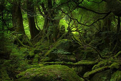 Elemental - Espírito da Natureza