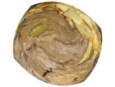 Fígado de Porco Cru em 3D