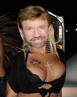 Chuck Norris Gay