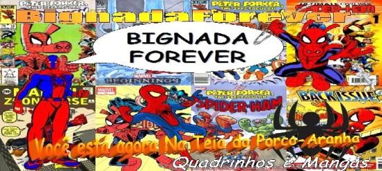 BignadaForever - Capa